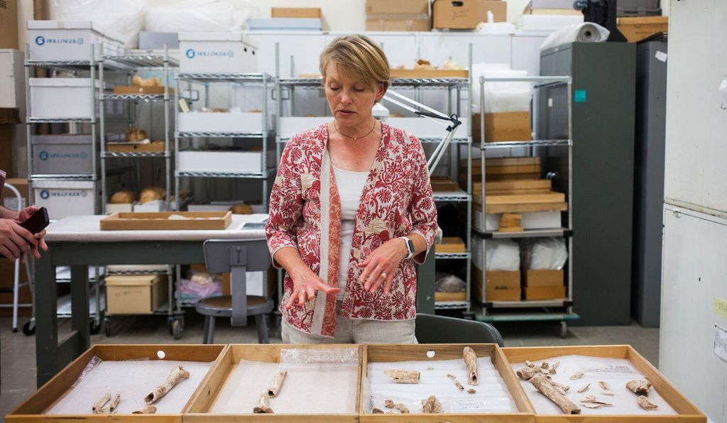 Kari Bruwelheide describes the bone fragments that kicked off a string of stunning archaeological findings at the site of Second Bull Run.