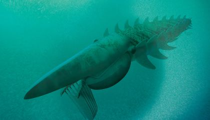 Scary Lobster-Like Fossil Was Once One of the Earth's Largest Animals