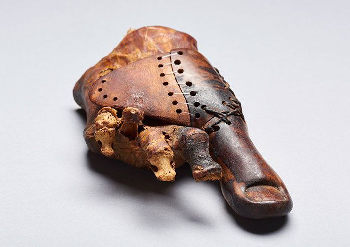 Caption: This Ancient Wooden Toe Is the Oldest Prosthetic