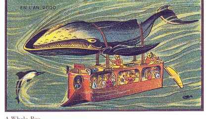Could a Whale-Powered Bus Be the Future of Transportation?