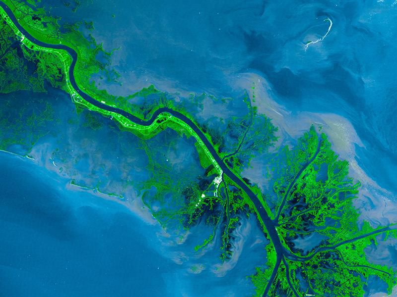 The Mississippi Delta, seen from space in 2001.