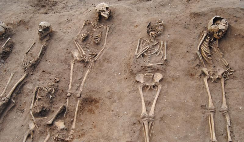 Black Plague victims' bones