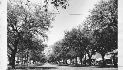 The Highway That Sparked the Demise of an Iconic Black Street in New Orleans