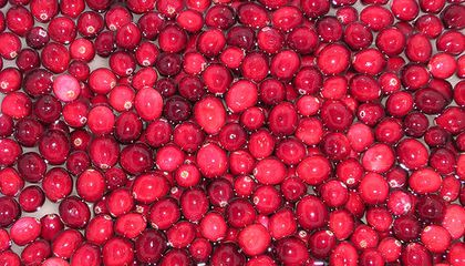 Five Colorful Ways to Eat Fresh Cranberries