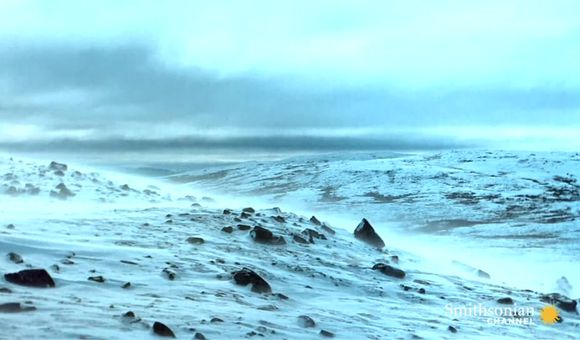 Preview thumbnail for video'Death in the Arctic
