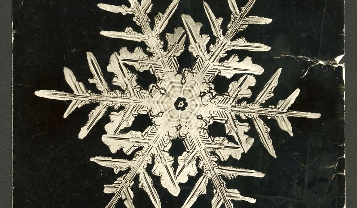 The Man Who Photographed Snowflakes