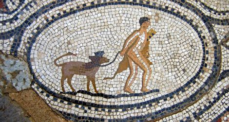 How Ancient Greeks Named Their Puppies