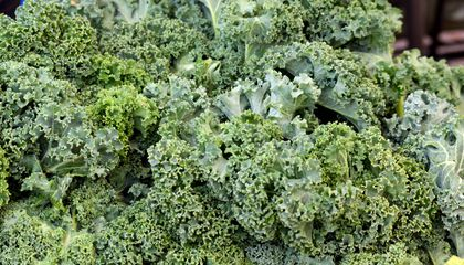 There's a Scientific Explanation For Why Adults Are More Likely to Tolerate Leafy Greens
