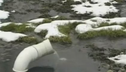 Artificial Wetland Uses Bacteria to Clean Pharmaceuticals From Sewage