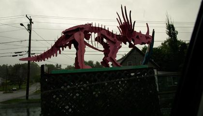 Dinosaur Sighting: Maine's Pink Triceratops