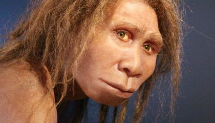 Four Species of Homo You've Never Heard Of