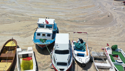 Turkey Begins to Clean Smelly Sea Snot From Its Shores
