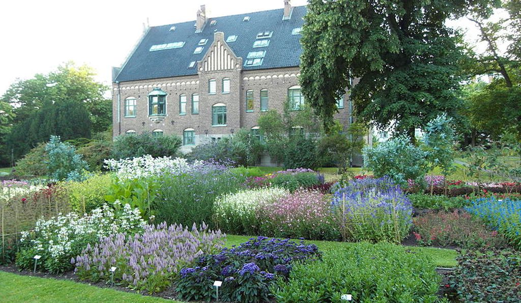 A garden filled with diverse flowers will make an outsize positive impact on the environment.