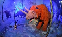Dinosaurs in the Ice Age?