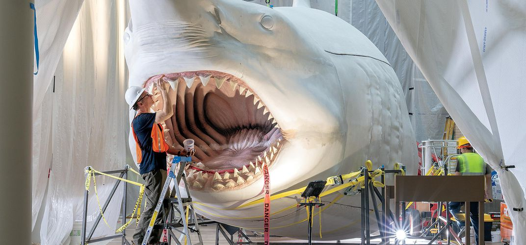 Caption: Reimagining the Megalodon