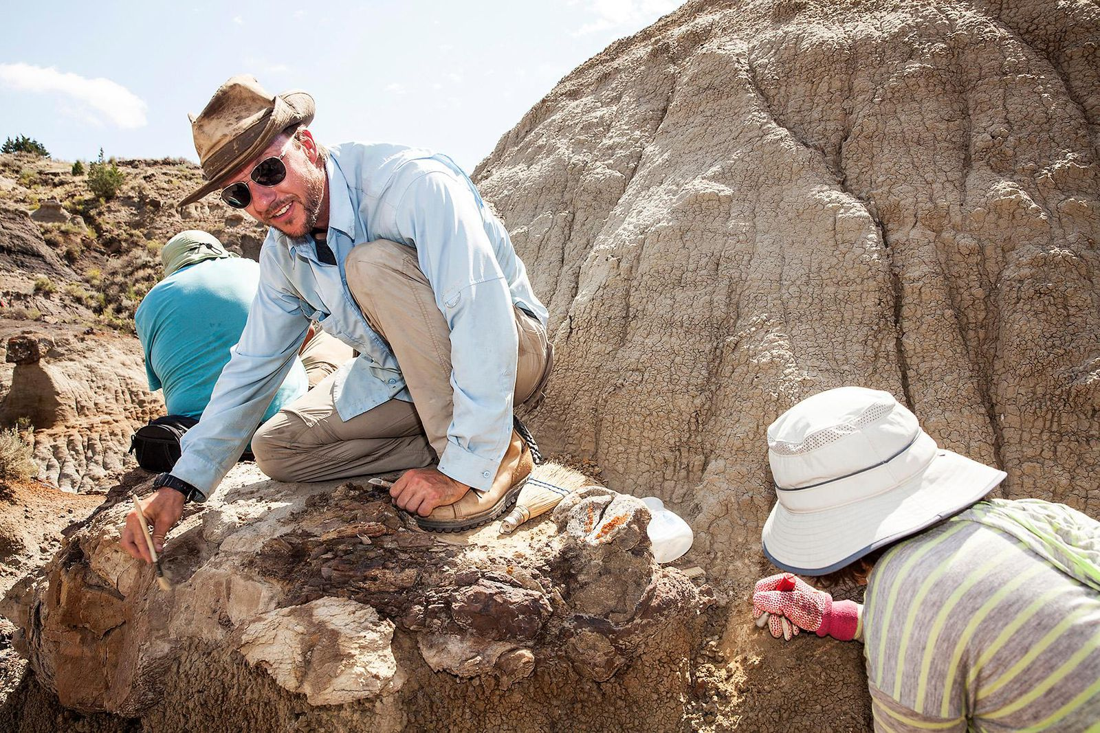 Dinosaur Country Unearthing the Badlands Prehistoric Past