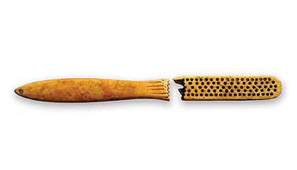 archaeologists unearthed a toothbrush