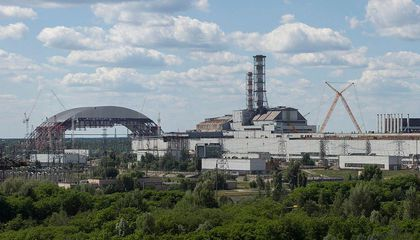 Chernobyl Survivors Do Not Pass Excess Mutations on to Their Children After All