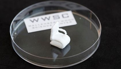 You Can Now 3D Print With Liquefied Wood