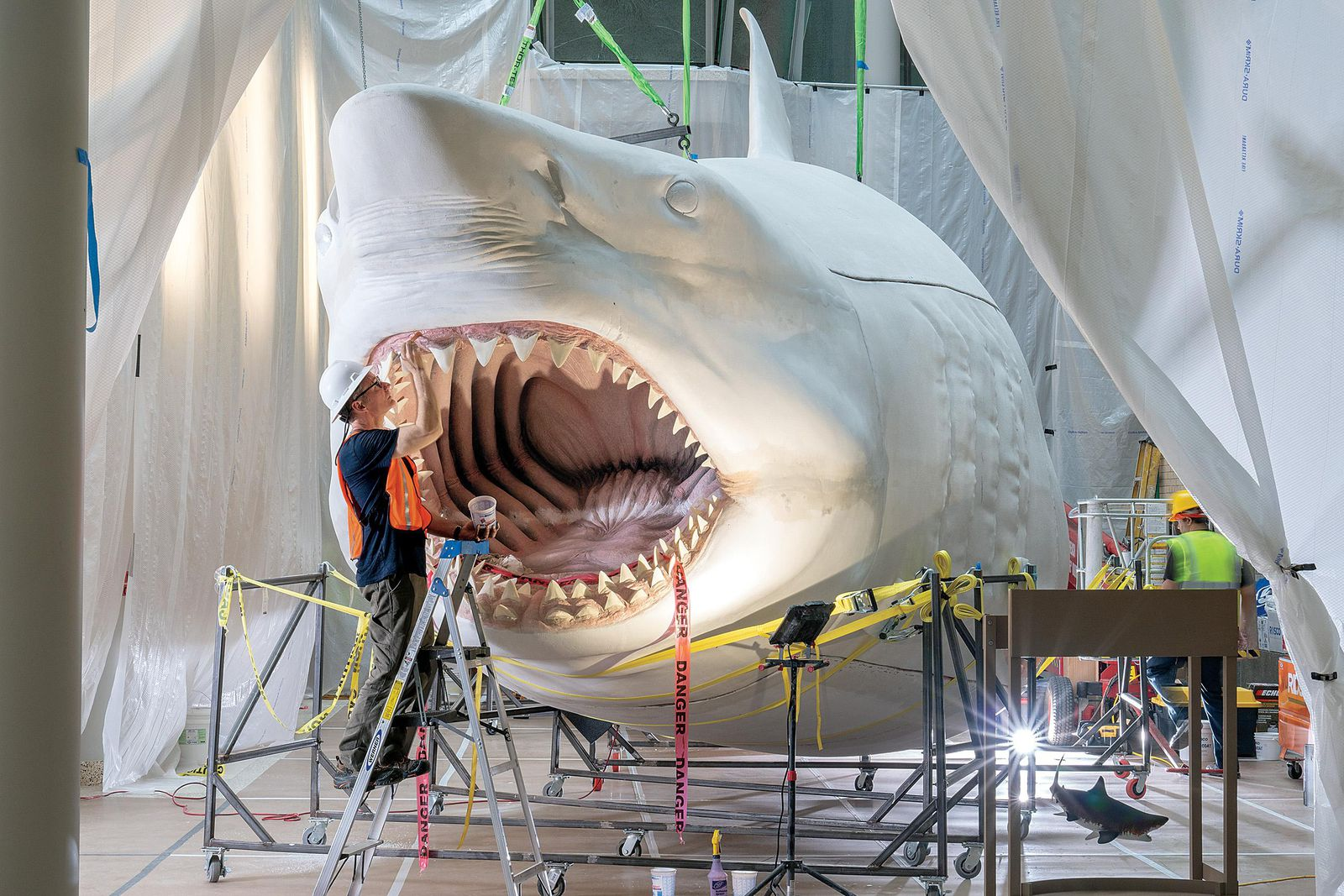 Reimagining The Megalodon The World S Most Terrifying Sea
