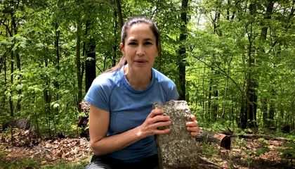 "Smithsonian Geologist Liz Cottrell answers your questions in the National Museum of Natural History's YouTube series, ""The Doctor Is In."" (Smithsonian Institution)"