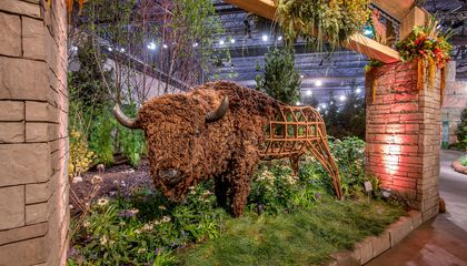 How to Maintain Your Garden Zen at the Philadelphia Flower Show