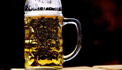 Traces of 13,000-Year-Old Beer Found in Israel