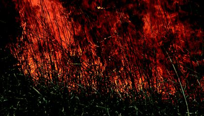 Wildfires Have Already Charred Over 2 Million Acres This Year