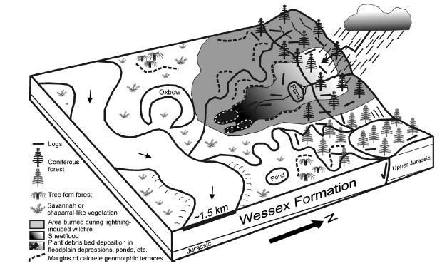 20110520083236debris-flow-diagram.jpg