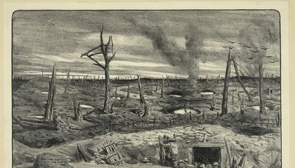 "The Legend of What Actually Lived in the ""No Man's Land"" Between World War I's Trenches"