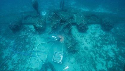 Bones Recovered From Wreckage of WWII Plane May Belong to Missing Airmen