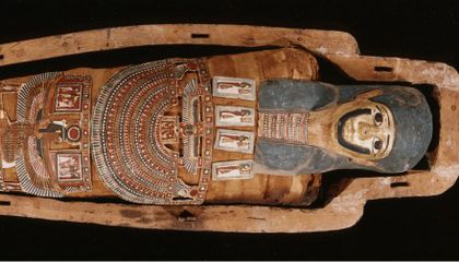 Egyptian Mummification Rituals Uncovered at Natural History
