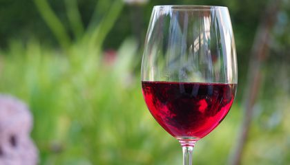 How One Mycologist Saved France's Wine (Among Other Things)
