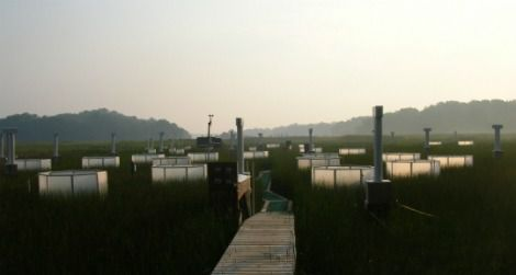 The Global Change Research Wetland