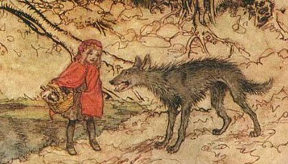 There Are 58 Versions Of Little Red Riding Hood Some 1 000 Years