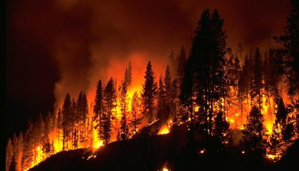 Western U.S. Forest Fires Could Double Within 40 Years