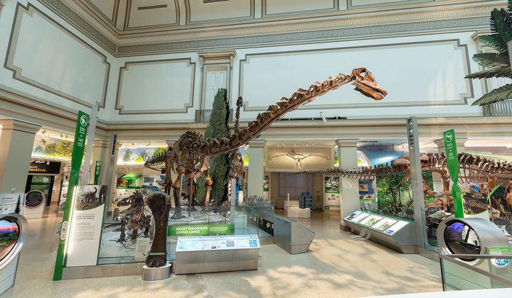 Smithsonian's New Fossil-Dino Hall Opens June 8