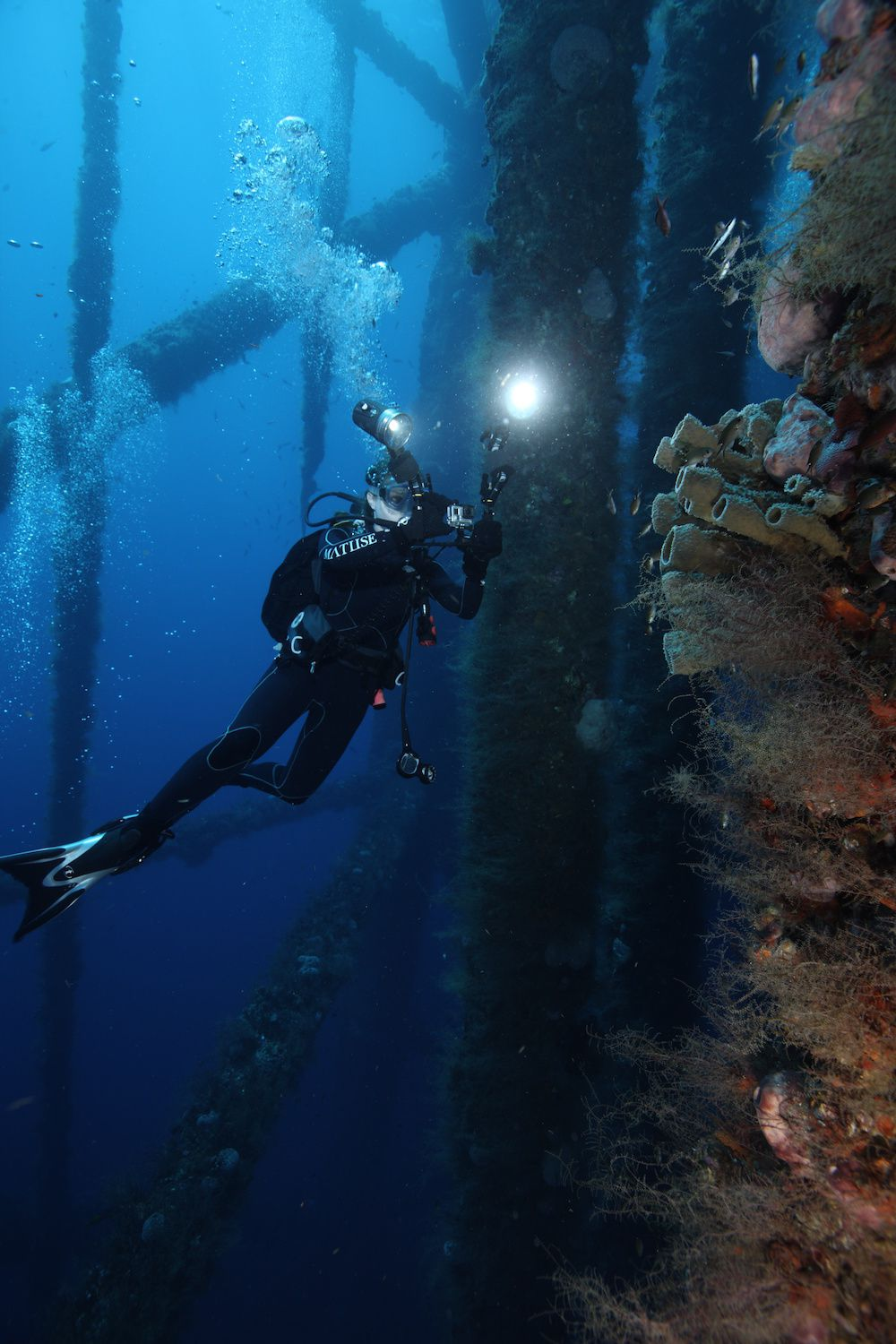 diving reefed oil rigs 2