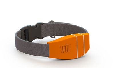 Five Wild Ideas That Just Got Funded: From A Fitbit for Dogs to Soap Jewelry