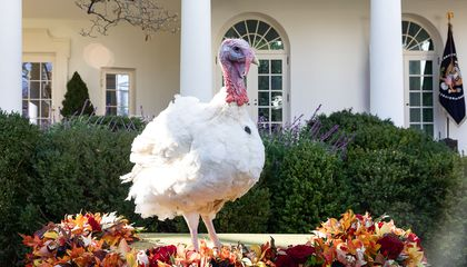 Image: Presidents from Lincoln to FDR kept the Thanksgiving tradition going
