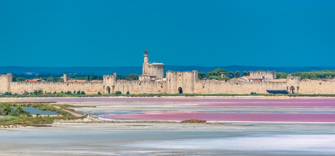 Pink-colored salt marshes, Aigues-Mortes, the Camargue