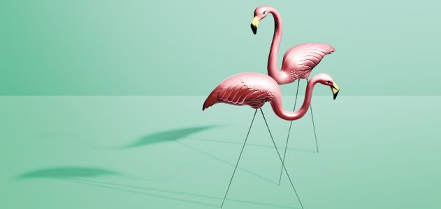 The Tacky History Of Pink Flamingo