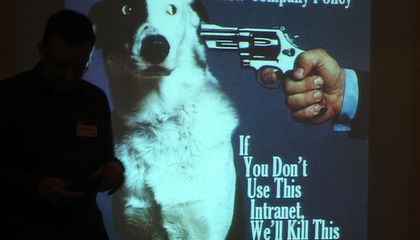 Are Animal Rules for TVs And Movies Strict Enough?
