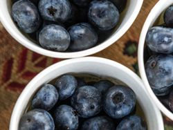 Blueberry Festival image