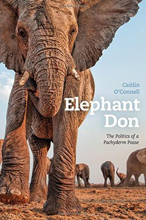 Preview thumbnail for video 'Elephant Don: The Politics of a Pachyderm Posse
