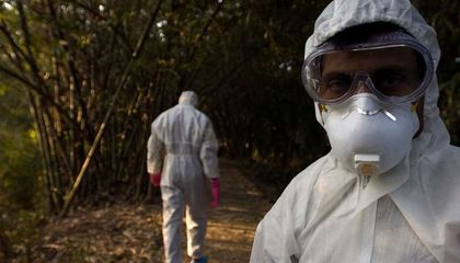 The Pandemic Everyone Fears Is Flu In the Wrong Place At the Wrong Time