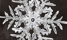 Snow crystal photomicrograph, C. 1890