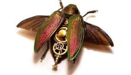 Geared Grasshoppers: Q and A with Craft Fair Artist Mike Libby