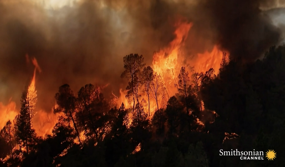 Preview thumbnail for video'Drones Are Now Being Used to Battle Wildfires