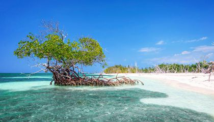 Discover Cuba's Unspoiled Shores
